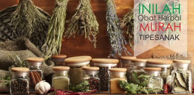 Obat Tipes Herbal Murah Untuk Anak