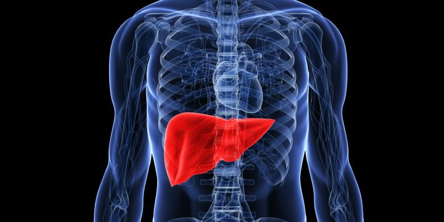 Obat Terbaik Untuk Mengobati Penyakit Liver